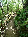 Fontanigorda-bosco delle fate2.jpg
