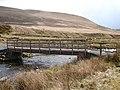 Foot-cycle bridge over Afon Diliw - geograph.org.uk - 1103632.jpg
