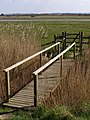 Footbridge, Needs Ore Marshes - geograph.org.uk - 389741.jpg