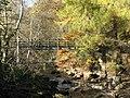 Footbridge over the River East Allen (3) - geograph.org.uk - 1586037.jpg