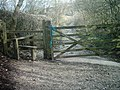 Footpath to Carsington - geograph.org.uk - 366953.jpg