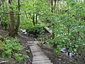 Footpath to Threlkeld - geograph.org.uk - 1513369.jpg