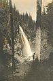 Forest waterfall (3230008730).jpg