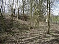 Former Avon Generating Station, Warwick - geograph.org.uk - 1203967.jpg