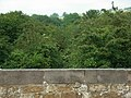 Former railway line - geograph.org.uk - 460203.jpg