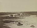 Fort Carroll 32733v.jpg