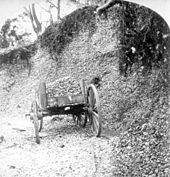 Black and white photo of a mound of oyster shells, approximately 20 feet high, covered by vines at the top and the middle exposed. A wooden wheelbarrow sits in front of it.