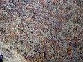 Fossiliferous sandstone (Byer Sandstone, Lower Mississippian; Dugway Outcrop, Newark, Ohio, USA) 1 (32767643075).jpg