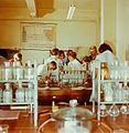 Fotothek df n-15 0000543 Chemielaborant.jpg