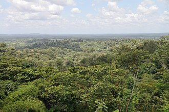 Special member state territories and the European Union - French Guiana tropical forest towards Cacao.
