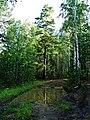 G. Karabash, Chelyabinskaya oblast', Russia - panoramio (1).jpg
