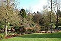 Garden Pond - geograph.org.uk - 158260.jpg