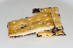 Garibaldi biscuit.jpg
