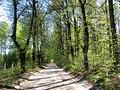 Garkalnes novads, Latvia - panoramio (8).jpg