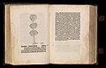 Gart der gesuntheit - Ortus sanitatis (Herbarius) MET DP358433.jpg