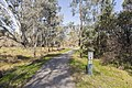 Gateway Island Trail on the banks of the Murray River on Gateway Island.jpg