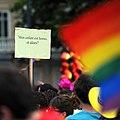 Gay pride 070 - Marche des fiertés Toulouse 2011.jpg