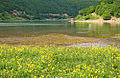 Gazivoda Lake - 7802 02.jpg