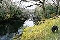 Gearhameen River - geograph.org.uk - 781244.jpg