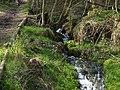 Gelobtbachtal, údolí Klopotského potoka - panoramio (46).jpg