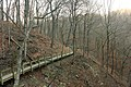 Gfp-iowa-pikes-peak-state-park-wooden-walkway.jpg