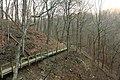 Gfp-iowa-pikes-peak-state-park-wooden-walkway.jpg