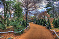 Gfp-st-louis-botanical-gardens-walkway-in-the-garden.jpg