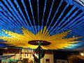 Girassol gigante noturno 2014.jpg