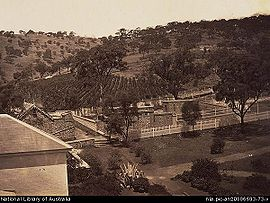 Glen Osmond, around 1869.jpg