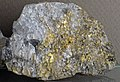 Gold and quartz (Holy Terror Mine, Keystone, Black Hills, South Dakota, USA) 5 (17220214335).jpg