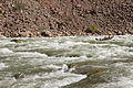 Grand Canyon National Park, Dory in Hance Rapid 3068 - Flickr - Grand Canyon NPS.jpg