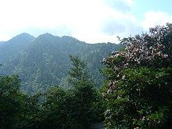 Great Smoky Mountains Overlook.JPG