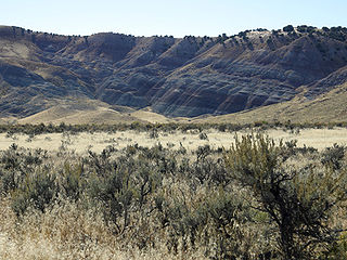 Morrison Formation Rock formation in the western United States