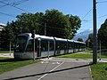 Grenoble TAG Alstom Citadis n°6015 LB Les Taillées Universités.JPG