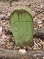 Grenzstein Waldebene Ost ST 49.JPG