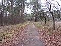 Grigiškės, Lithuania - panoramio (148).jpg