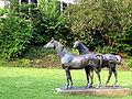 Grugapark Philipp Harth Pferde.jpg