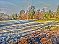 HDR Reigate Heath (8237893222).jpg