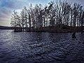 Halen III Nature Reserve Lake.jpg