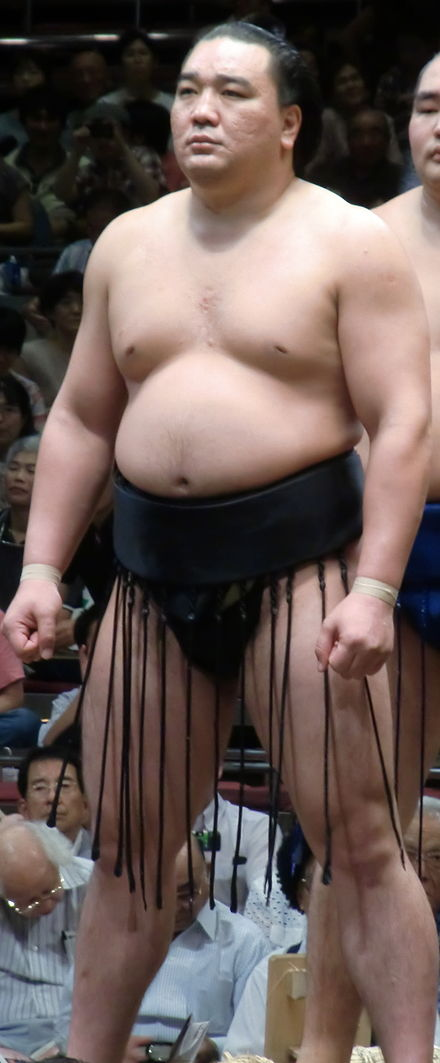日馬富士公平の画像 p1_17
