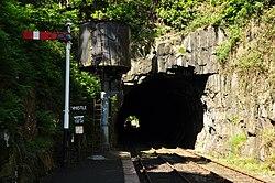 Haverthwaite railway station (6596).jpg