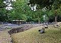 Herinrichting Stadspark Maastricht, juni 2018 (4).jpg