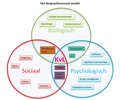 Het biopsychosociaal.png