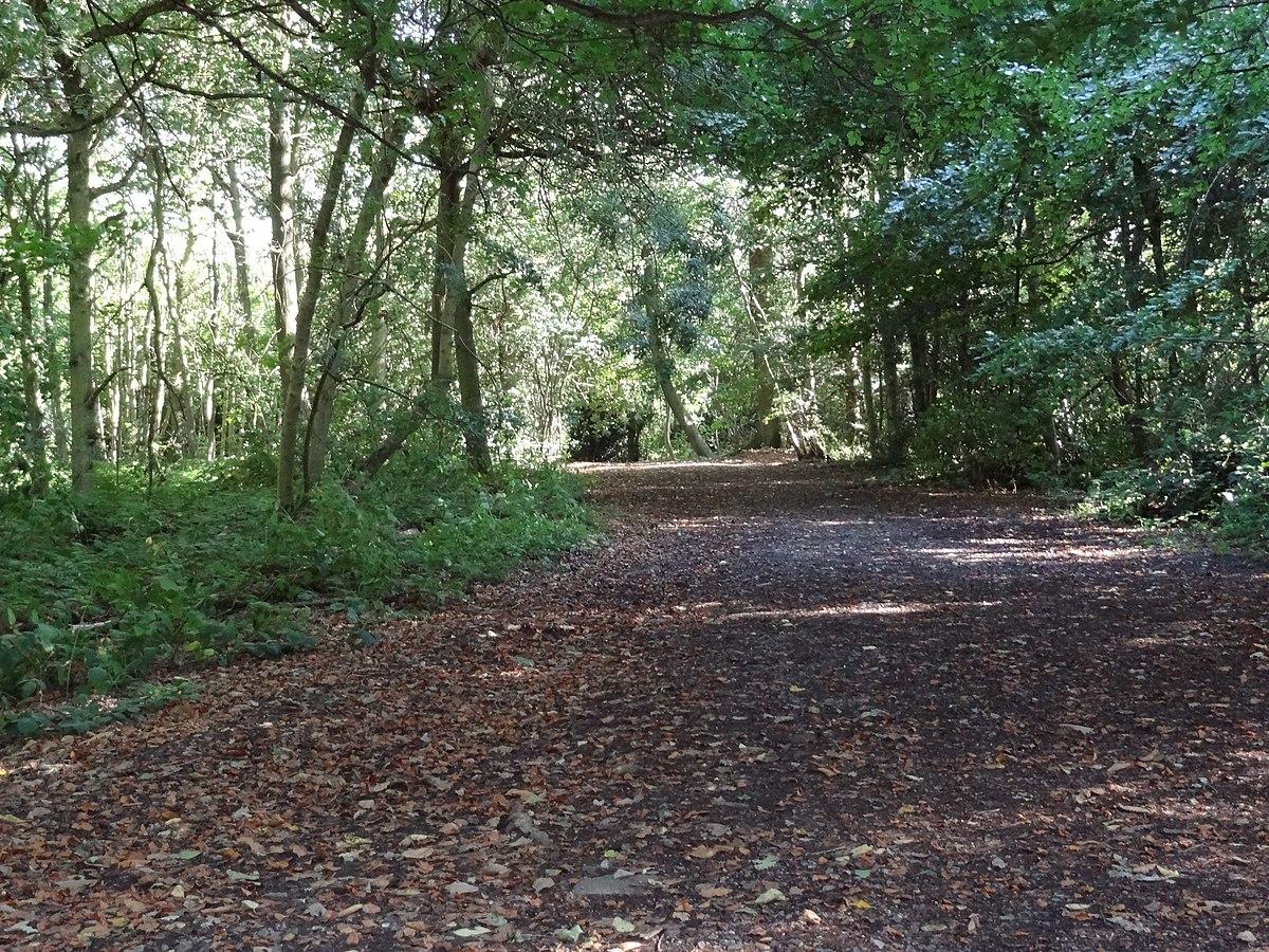 High Park Nature Centre Twitter