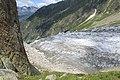 Hike to Glacier d'Argentière - panoramio (28).jpg