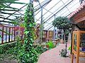 Historisch-Ökologische Bildungsstätte Emsland in Papenburg 2013 by-RaBoe 010.jpg