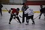 Hockey 20080824 (68) (2794741001).jpg