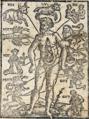 Homo signorum-1580.png