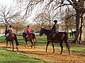 Horse riders in Hyde Park - geograph.org.uk - 313112.jpg