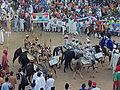 Horsemen during the September 2016 Durbar in Kano - 5.jpg